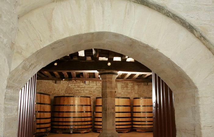 Visita y degustación de 7 vinos de Borgoña 27,00€
