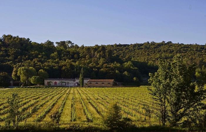 Vente Direct Domaine chateau Gasqui 14,00€