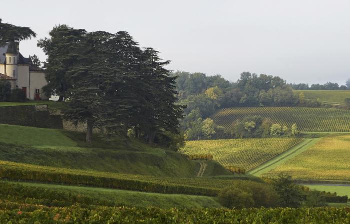 Visite et dégustation Chateau de Pressac, Saint Emilion Grand Cru Classé 18,00€