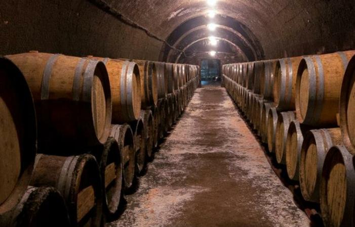 Visite Du Château du Petit Thouars - Vin du Val de Loire 1,00€