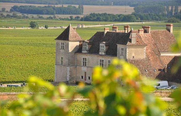 Journée privatisée en Bourgogne 295,00€