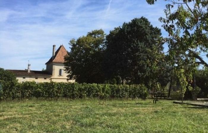 A la découverte de la viticulture Biologique 10,00€