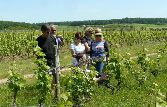 Voyage de découverte du vin de Loire depuis Paris 195€