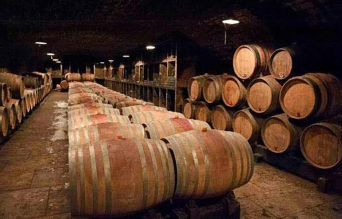 Visite privée d'une journée : Dégustation de vins, 445,00€