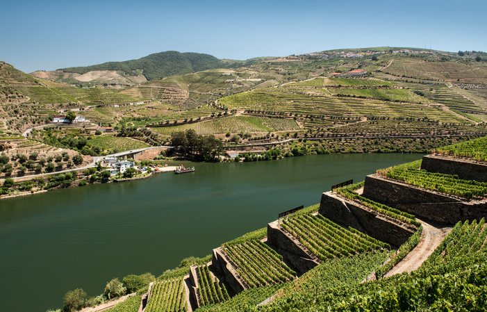 Détendez-vous Douro: Profitez de la vallée 100,00€