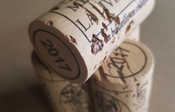 Viste et dégustations du Château Sainte Eulalie 1,00€