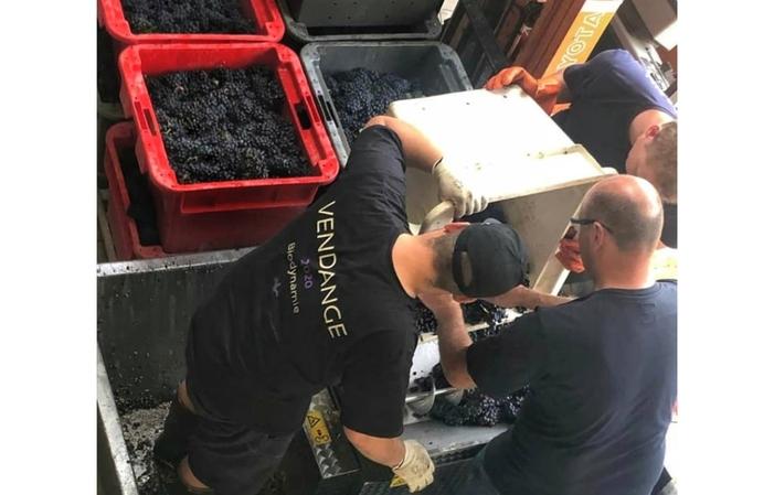 Visite et dégustations du domaine champagne Regis poissinet 1,00€
