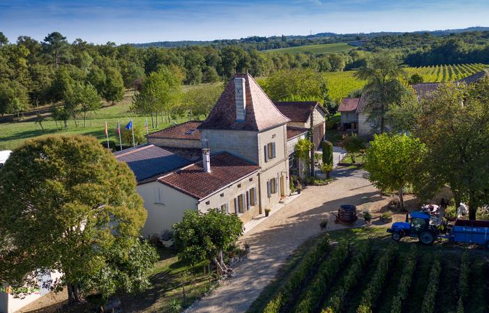 Vini biologici - Bordeaux 16,50€