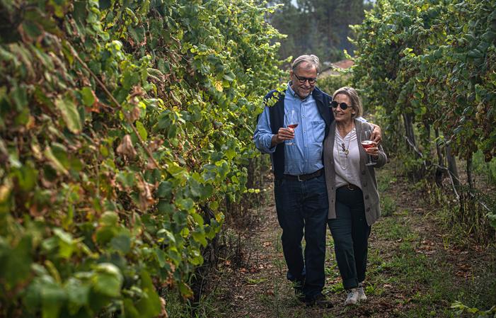 Degustazione di vini premium 33,00€