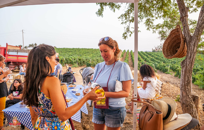 Visit and Tasting at the Domaine des Paladins €1.00