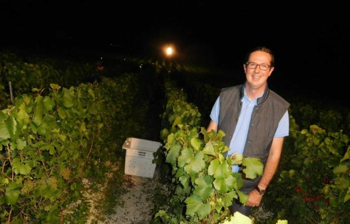 Take part in champagne night harvests €35.00