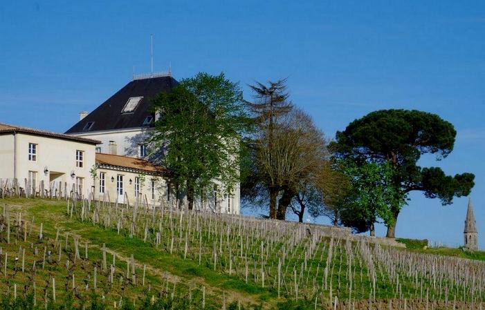 La Casa de Tournefeuille: la Habitación Rosa  150,00€