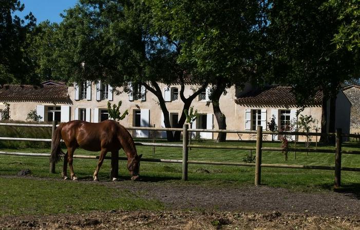 Chateau Mayne Lalande, walk-in habitación doble n  145,00€